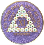 Bling Glitter Purple Crystallized Medallion