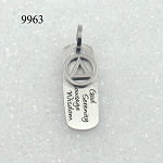 2 Piece AA Symbol with God Serenity Courage Wisdom Stainless Steel Necklace