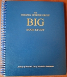 The Primary Purpose Group Big Book Study Guide