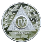 Painted Camo and Silver Plated Anniversary AA Coins