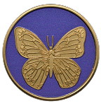 Butterfly Painted Medallion  AA NA Al Anon Coin