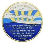 The Promises Inspirational Recovery Coin AA NA Al-Anon