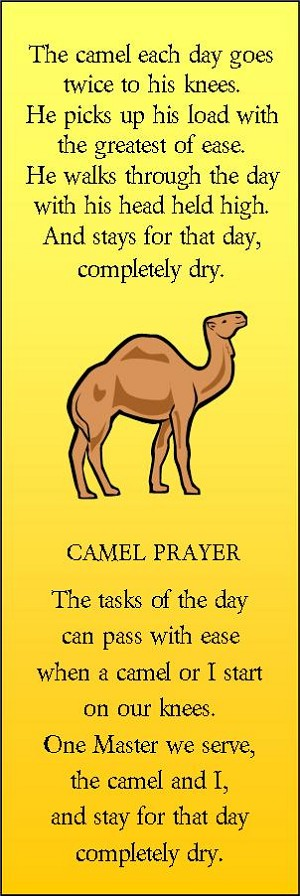 Camel Bookmark