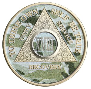 Painted Camo and Gold Plated Anniversary AA Coins